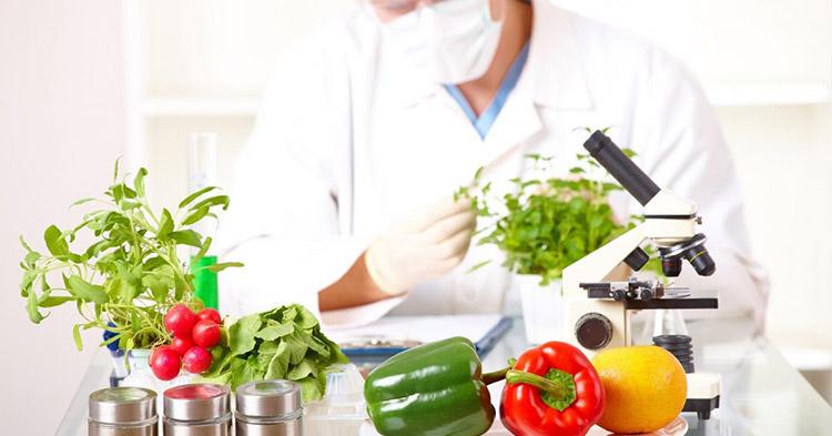 abadi, ejemplos de tecnologia de conservacion de alimentos, productos abadi, inocuidad en la industria alimentaria