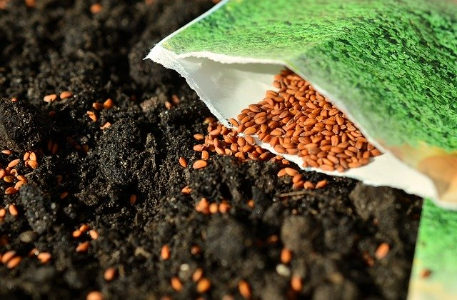 abadi, productos abadi, industria semillera es clave para abastecimiento de alimentos en contingencia