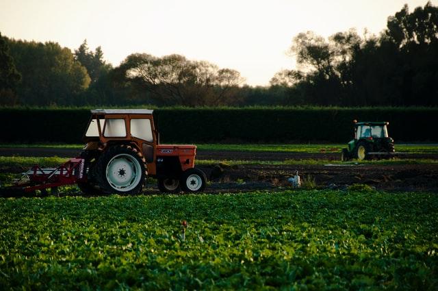 abadi, distribución de alimentos, agricultura sustentable en michoacan, programa gubernamental en michoacan
