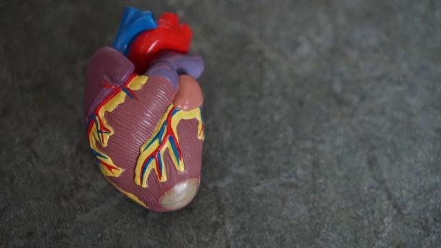 productos abadi, alimentos para cuidar el corazón